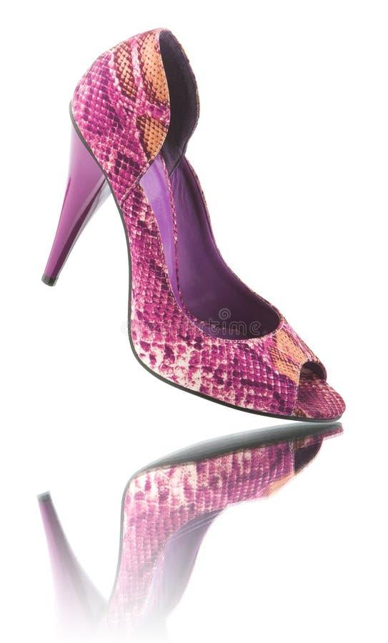 反映鞋子妇女 库存图片