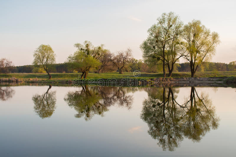 水反映 库存照片