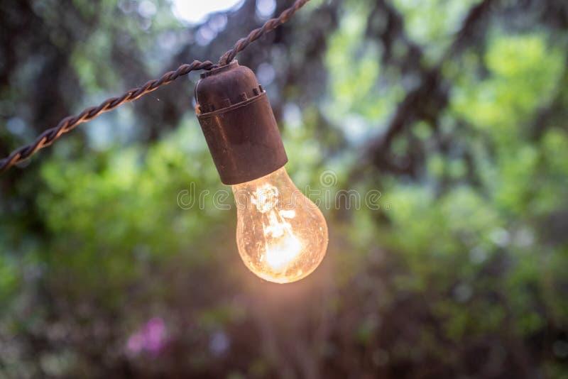发光一个室外的电灯泡黄色在黄昏 免版税库存照片