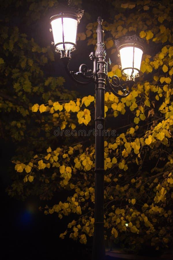 发光夜的旧式的路灯柱 库存图片