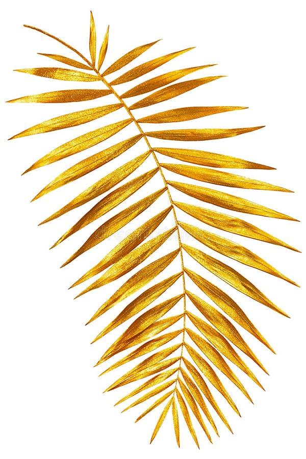 发光棕榈金子的分支  库存图片