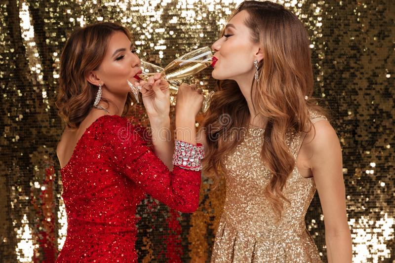 发光的礼服的喝香槟的两个女孩画象  库存照片