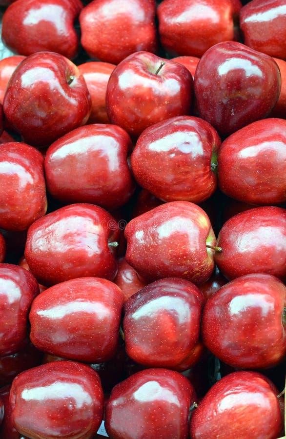 发光的红色苹果 免版税库存照片