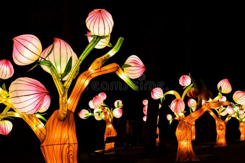 发光的花艺术设施在萨格勒布,克罗地亚 免版税库存照片