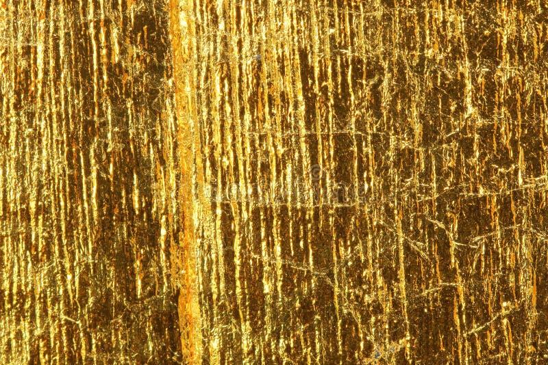 发光的黄色叶子黑暗的金箔 库存照片