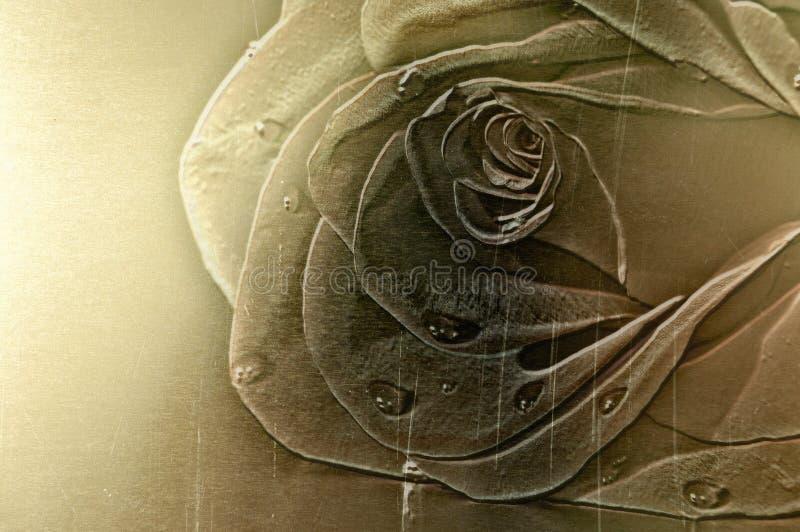 发光背景黄铜模式的玫瑰 免版税库存照片