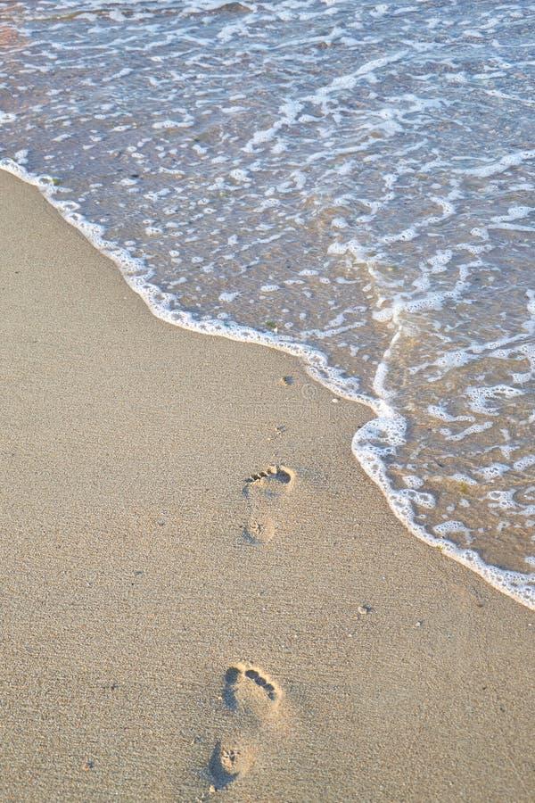 发光,完善在夏天结算在沙子的版本记录在海滩 免版税图库摄影