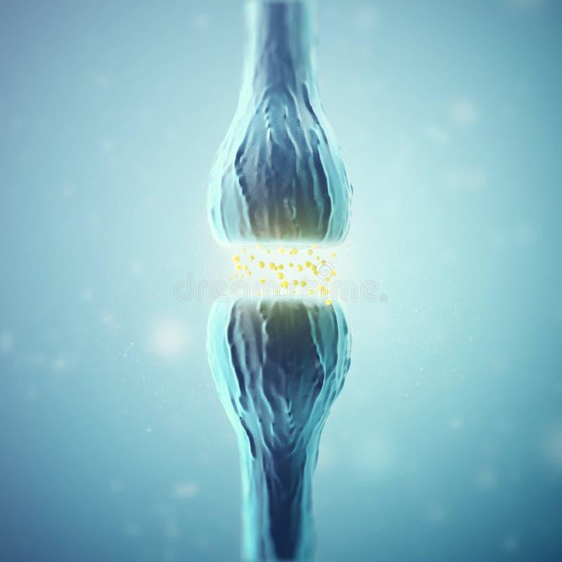 发出电子化工信号的突触和神经元细胞 3d翻译 向量例证