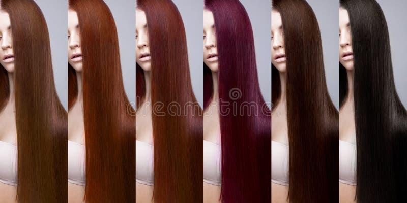 头发汇集彩色组 色彩 免版税库存图片