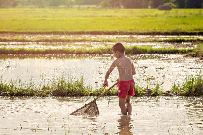 发现为鱼的年轻农业学家 免版税库存图片