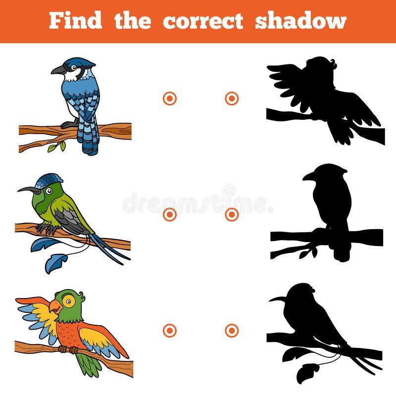 发现正确阴影,孩子的比赛 传染媒介套鸟 库存例证