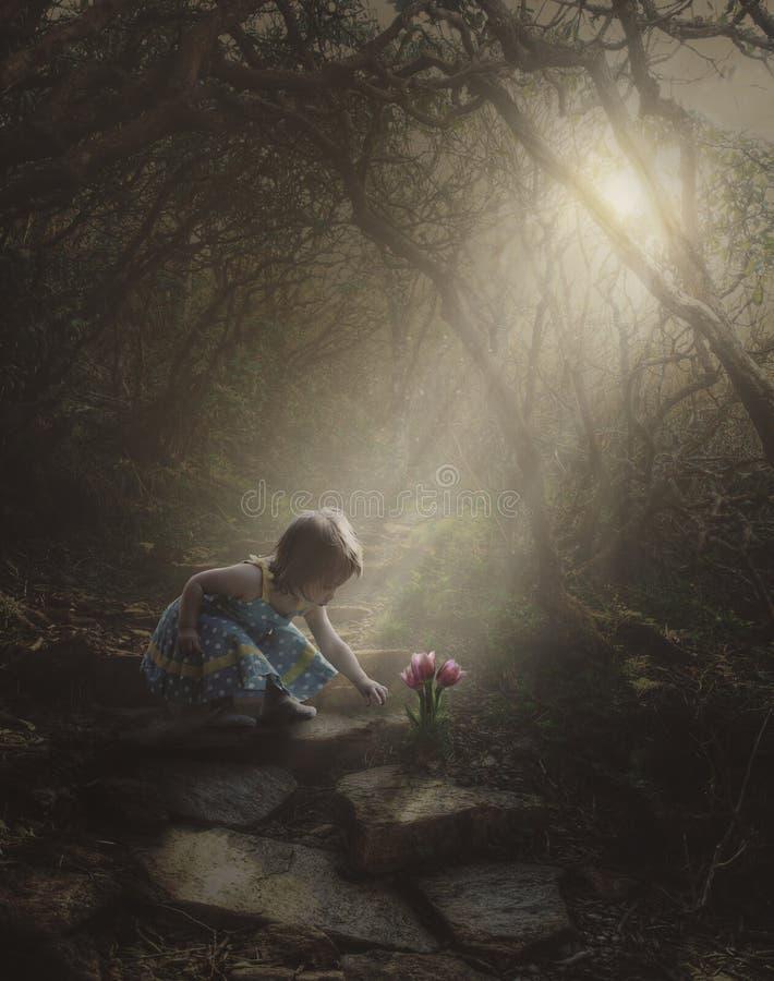 发现花的小女孩在森林里 免版税图库摄影