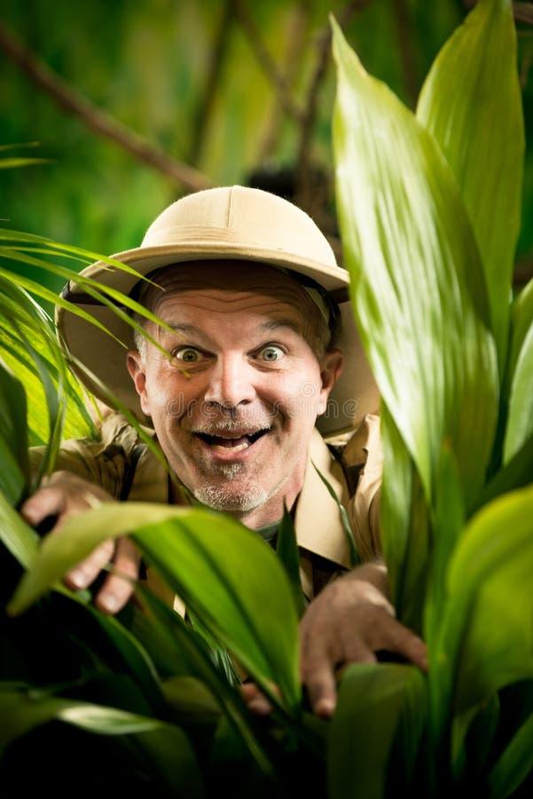 发现雨林密林的探险家 库存图片