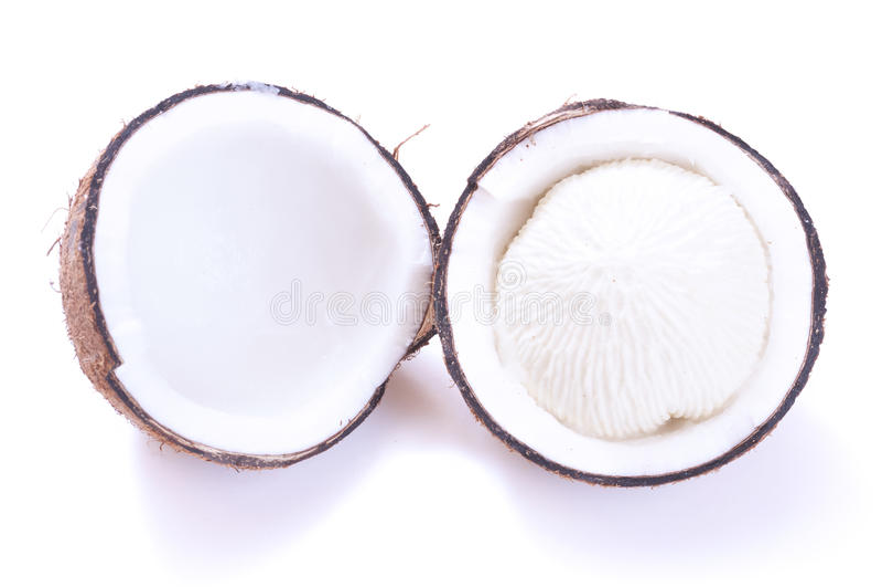 发芽的椰子肉 图库摄影