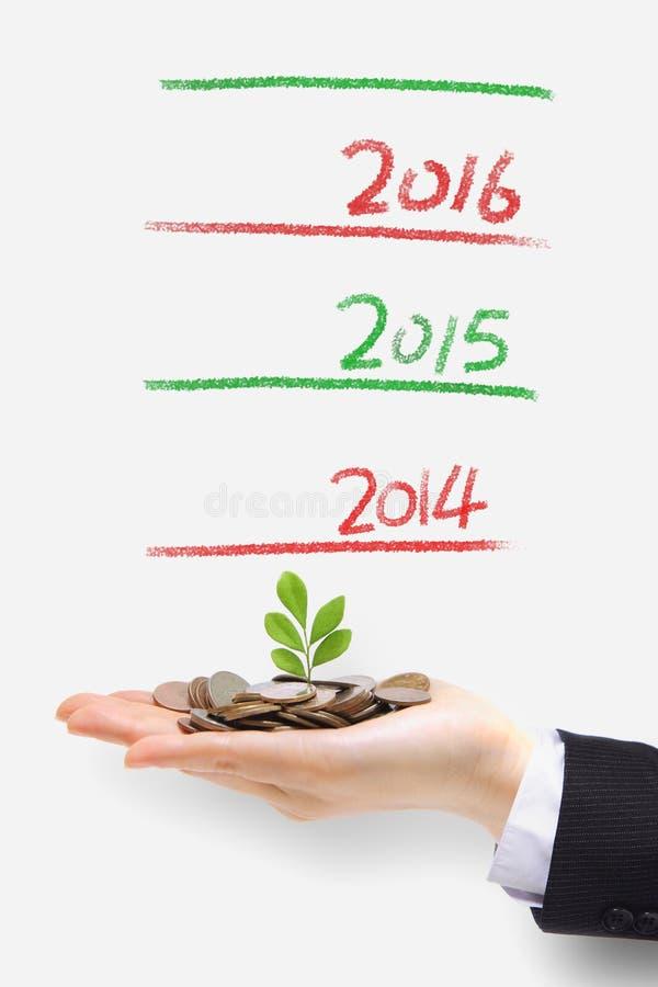 发芽从金钱的绿色植物 免版税图库摄影