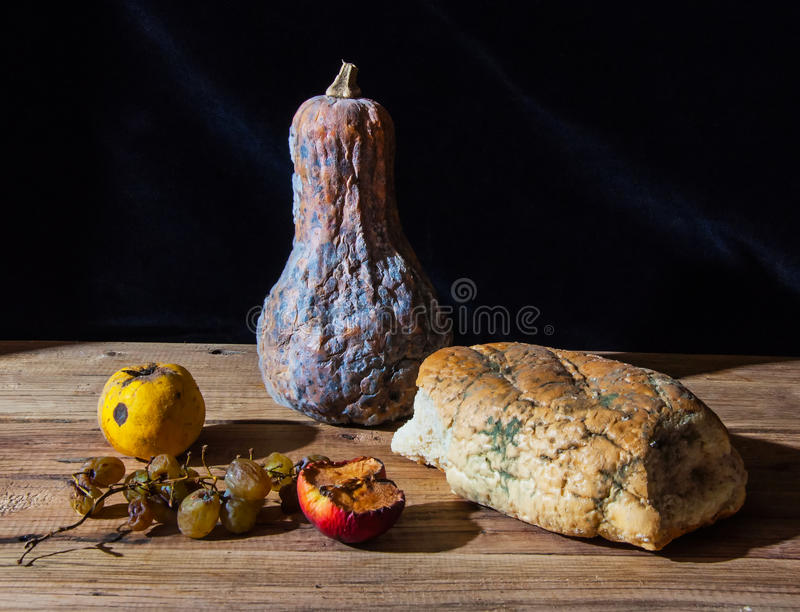 发霉和腐烂的食物 免版税库存照片