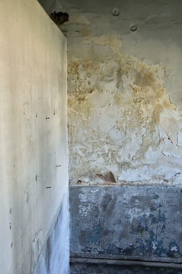 发霉的纹理墙壁 免版税库存图片