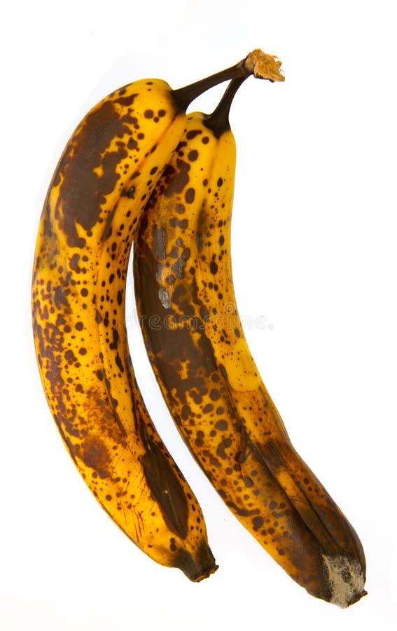 发霉的香蕉 库存图片