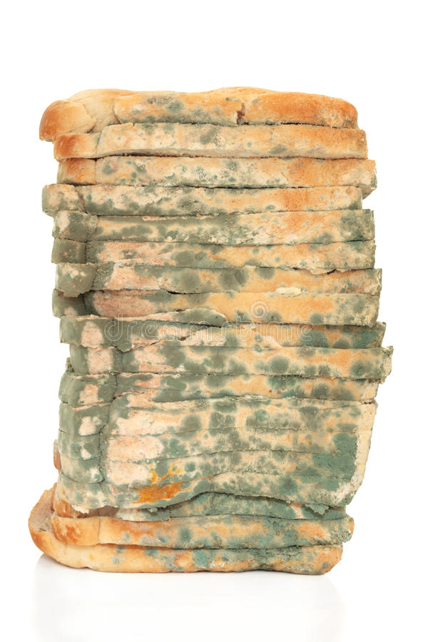 发霉面包的大面包 免版税库存图片