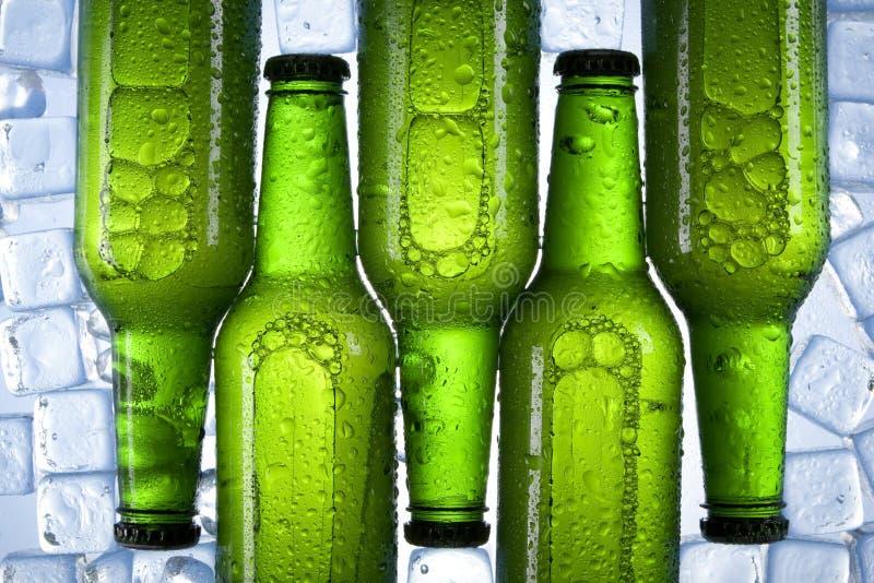 变冷的啤酒 图库摄影