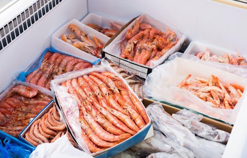 变冷的地中海海鲜紧密在柜台 免版税库存照片