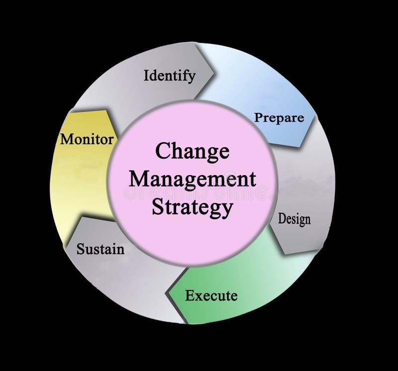 变动管理策略 向量例证