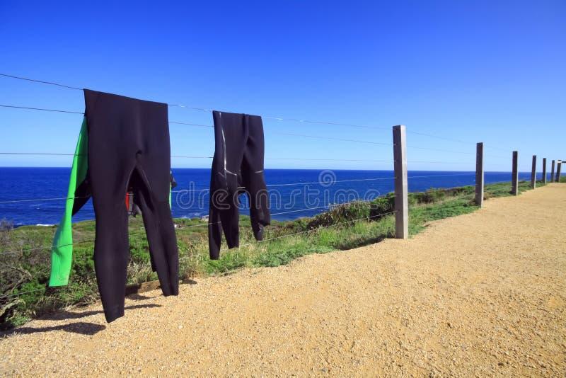 变干的潜水衣在阳光下 库存照片
