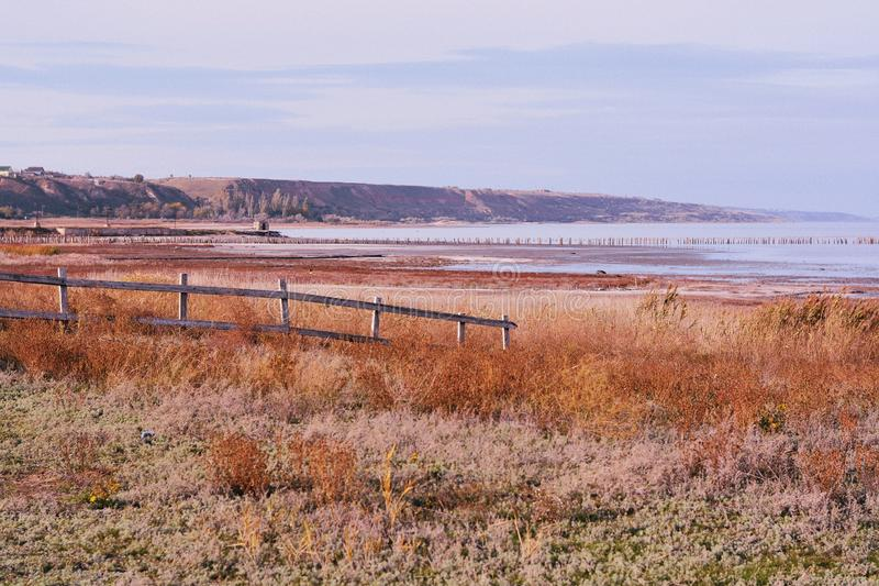 变干的草和木篱芭包括的土地用海滩和海在背景中 库存照片