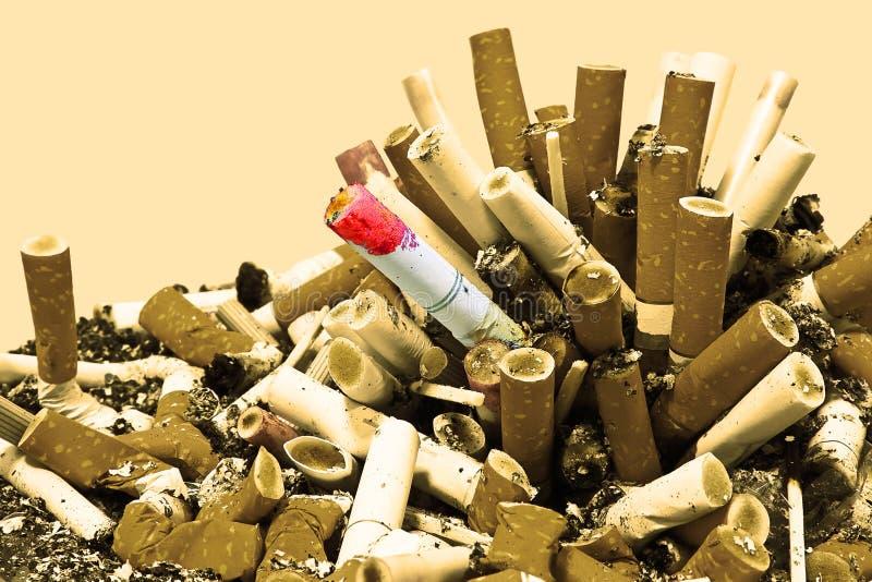 变成灰烬香烟没有乌贼属抽烟 免版税库存照片