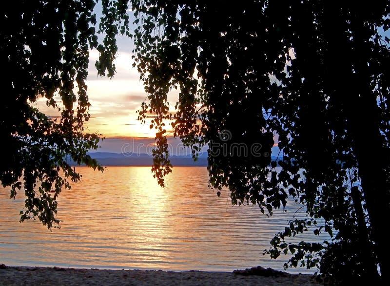 变暗在湖的日落天空有五颜六色的云彩和树黑暗的剪影的,金黄小时 图库摄影