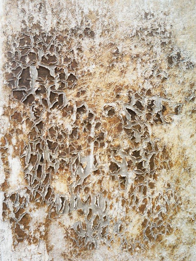 变老作为背景横幅水泥概念概念性建筑grunge脏的格式物质隐喻自然老模式减速火箭的铁锈石头纹理葡萄酒墙壁白色 它是概念,概念性o 免版税库存图片