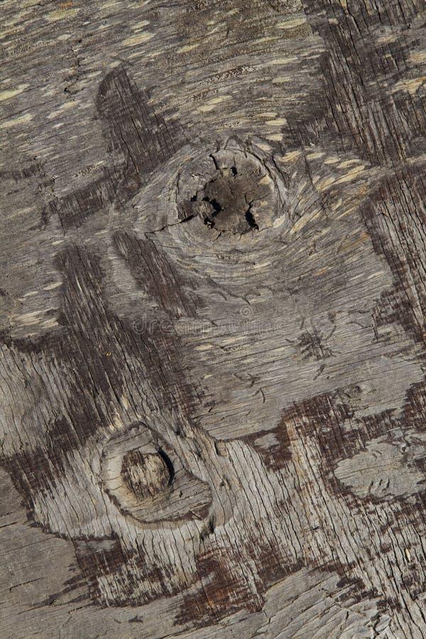 变老的特写镜头纹理木头 免版税库存图片