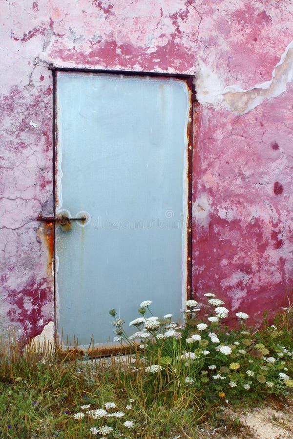 变老的红萝卜门开花通配formentera的墙壁 免版税库存照片
