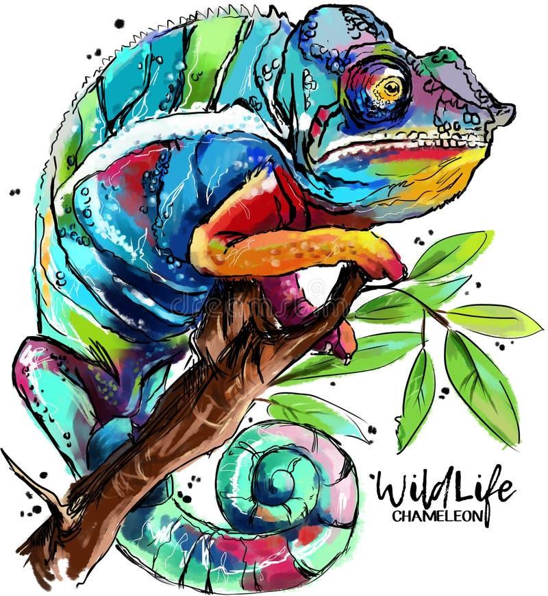 变色蜥蜴图画 向量例证