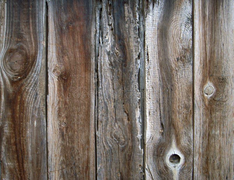变苍白老的木头 免版税库存图片