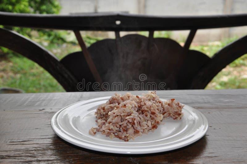 变褐煮熟的米 库存图片