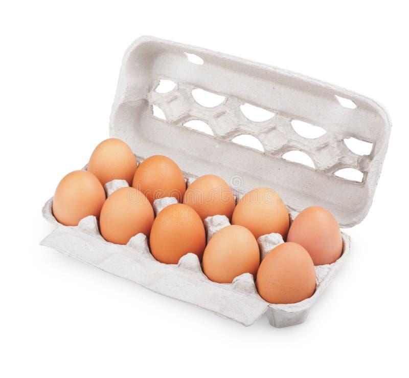 变褐纸盒蛋程序包十 库存照片