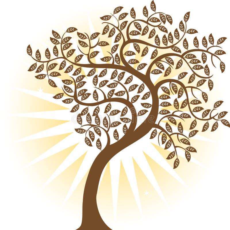变褐结构树 皇族释放例证