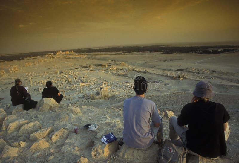 叙利亚扇叶树头榈罗马废墟 免版税图库摄影