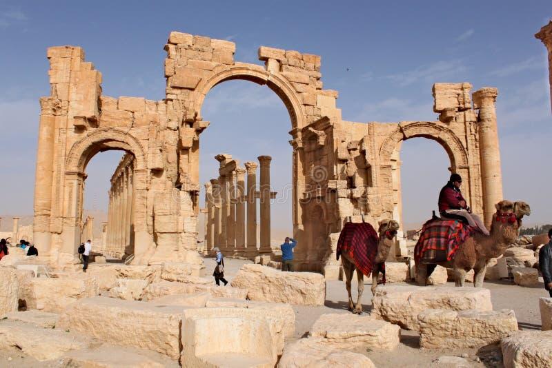 叙利亚,扇叶树头榈;2011年2月25日-胜利曲拱  扇叶树头榈古老闪族城市的废墟不久之前 库存照片