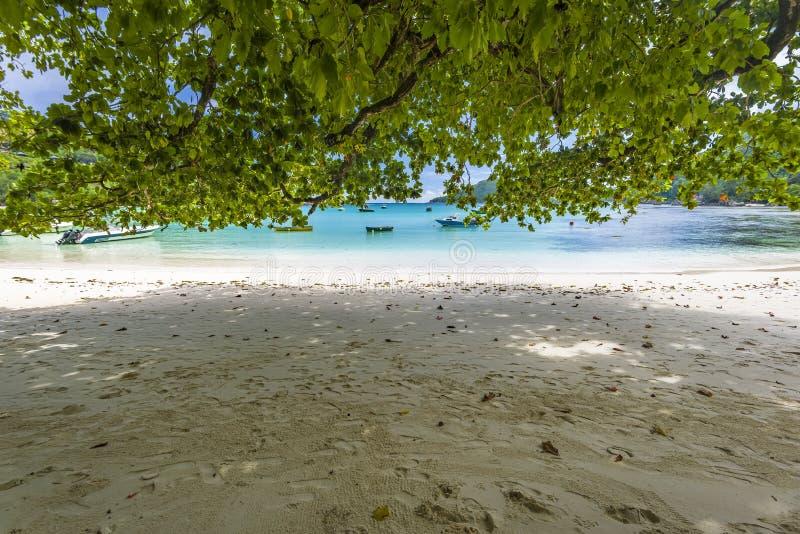 口岸Launay海岸公园,塞舌尔群岛 免版税库存图片