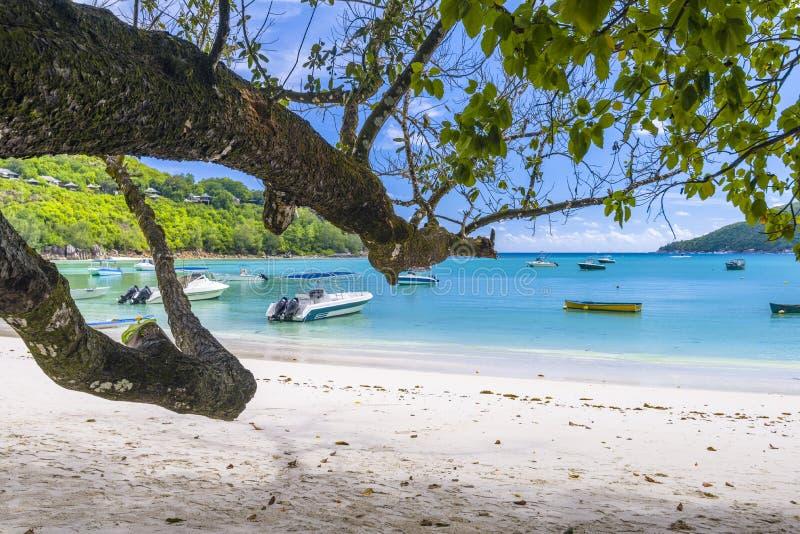 口岸Launay海岸公园,塞舌尔群岛 免版税库存照片