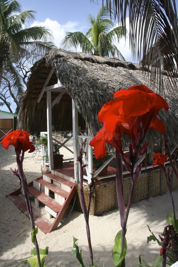 口岸Salut,海地 免版税库存图片