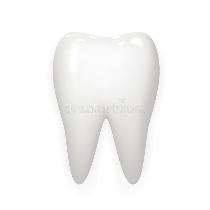 口腔医学现实3d白色牙被隔绝的嘲笑设计传染媒介例证 皇族释放例证