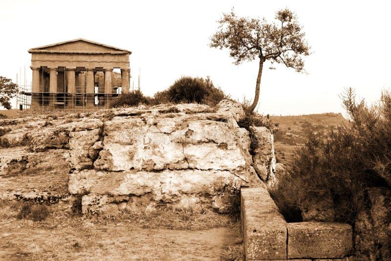 古典希腊语意大利古庙 库存图片
