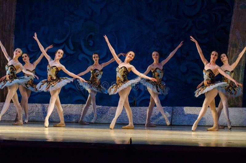 古典芭蕾睡美人 免版税库存图片