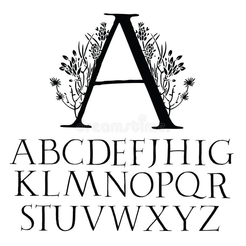 古典资本字体 库存例证