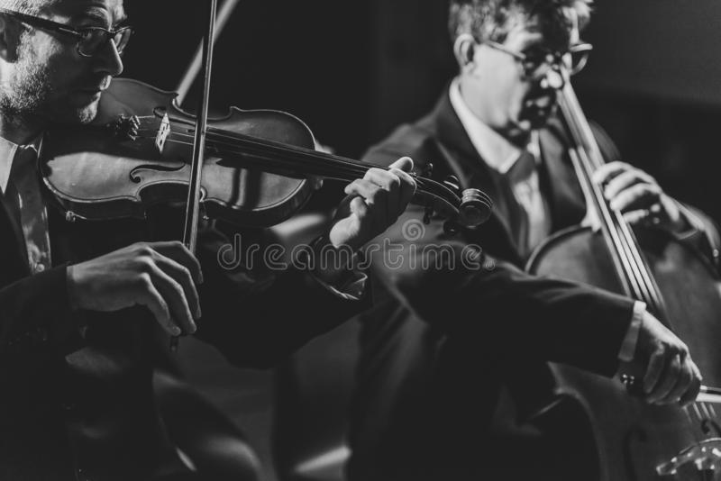 古典音乐会表现 免版税库存图片