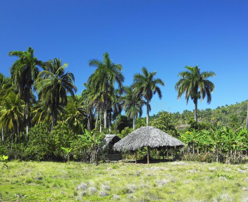 古巴国家公园 免版税库存照片