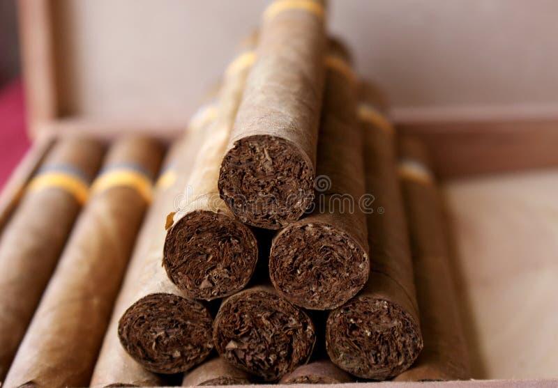 古巴的雪茄 库存图片